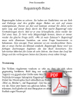 Textauszug als PDF-Datei